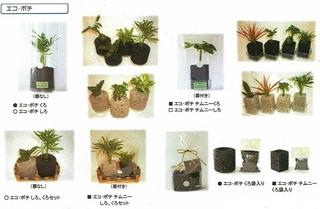 エコ・ポチ カタログ.jpg